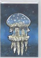 Gerald Dedios (Jellyfish) /1
