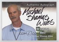 Michael Shamus Wiles as ASAC George Merkert