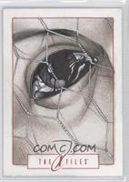 Richard Cox (Eye and Chicken Wire) /1
