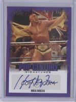Hulk Hogan /15