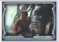 Luke Skywalker, R2-D2 /299
