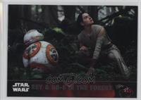 Rey & BB-8 in the Forest