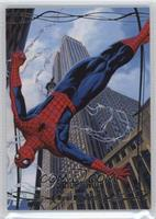 Level 4 - Spider-Man /99