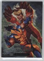Wolverine vs. Sabretooth