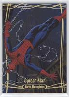 Master Set - Spider-Man