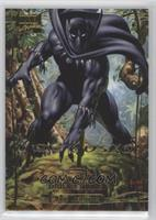 Level 3 - Black Panther
