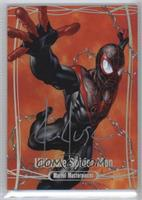 Ultimate Spider-Man /10