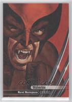 Canvas High Series - Wolverine