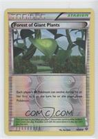 Forest of Giant Plants
