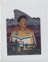 Terry Labonte /999