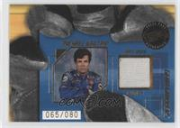 Michael Waltrip /80