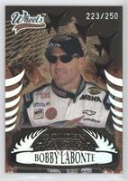 Bobby Labonte /250