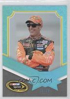 Jamie McMurray /20