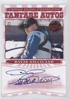 David Gilliland /25