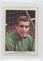 Peter Shilton [Poor to Fair]
