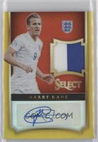 Harry Kane /10