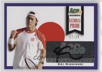 Kei Nishikori /25