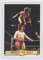Jimmy Snuka, Andre the Giant