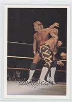 Stan Lane vs. Sean Royal