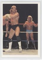 Lex Luger vs. Sting