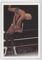 Michael Hayes vs. Ric Flair