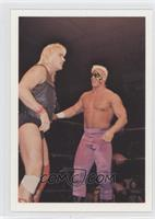 Barry Windham & Sting