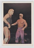 Barry Windham, Sting