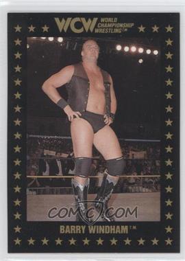 1991 Championship Marketing WCW - [Base] #17 - Barry Windham