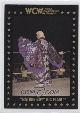 1991 Championship Marketing WCW - [Base] #35 - Ric Flair
