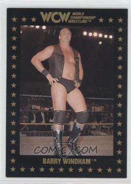 1991 Championship Marketing WCW #17 - Barry Windham