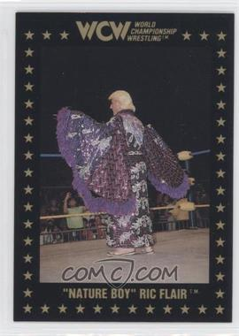 1991 Championship Marketing WCW #35 - Ric Flair