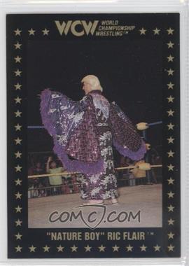 1991 Championship Marketing WCW #35 - Ric Flair