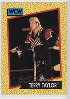 Terry Taylor
