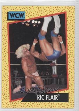 1991 Impel WCW #40 - Ric Flair
