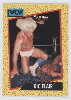1991 Impel WCW #41 - Ric Flair