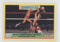 Summer Slam - Ric Flair, Ultimate Warrior, Mr. Perfect, Randy Savage