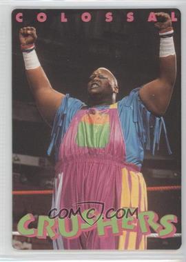 1994 Action Packed WWF - [Base] #35 - Mabel