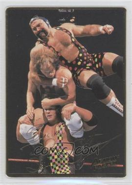 1994 Action Packed WWF #24 - Steiner Brothers