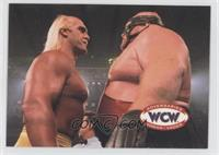 Hulk Hogan, Vader