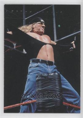1998 Comic Images WWF Superstarz #16 - Triple H