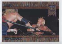 DDP v. Hogan (Bash At The Beach)
