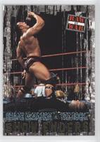 Shane McMahon vs. The Rock