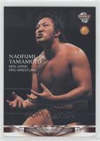Naofumi Yamamoto