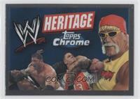 Checklist (Hulk Hogan, John Cena, Batista)
