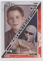 Scott Steiner /50