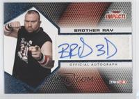 Brother Ray /25