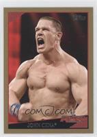 John Cena /500