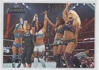 Wrestlemania XXVI - Diva Tag Team Match