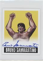 Bruno Sammartino /25
