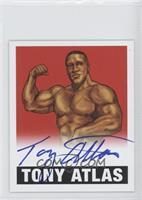 Tony Atlas /10